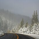 A Winter Drive by Barbara  Brown