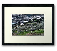 HDR Field Framed Print