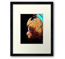©DA Pirate Paintography Framed Print