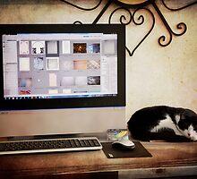 My Helper by Linda Lees