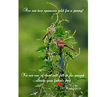And you are worth far more. . . Photographic Print