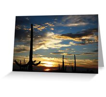 Southern Arizona Sunset Greeting Card