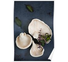 Oyster Mushrooms with Thai Basil Flowers Poster