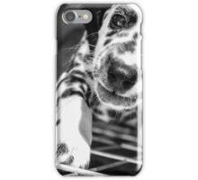 Rescue Puppy iPhone Case/Skin