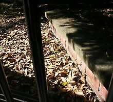 graveyard by dnilasor