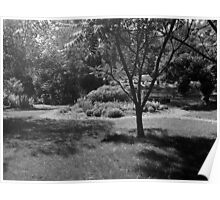 Landscape B&W Poster