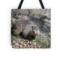 Wow! So That's What You Look Like. Tote Bag