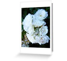Governor Generals Roses #21 Greeting Card