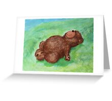 Resting Butterfly with Teddy Greeting Card