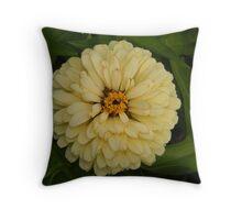 Creamy Belle Throw Pillow