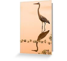 Patient hunter Greeting Card