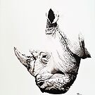 Black Rhino portrait by Paul Fearn