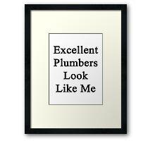 Excellent Plumbers Look Like Me  Framed Print