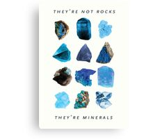 They're minerals Canvas Print