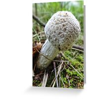 Marshmallow Mushroom Greeting Card