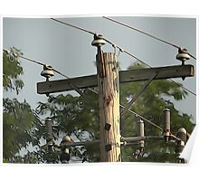 Utility pole Poster