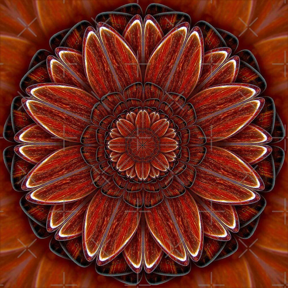 Red Jasper Flower by haymelter