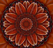Red Jasper Flower by haymelter
