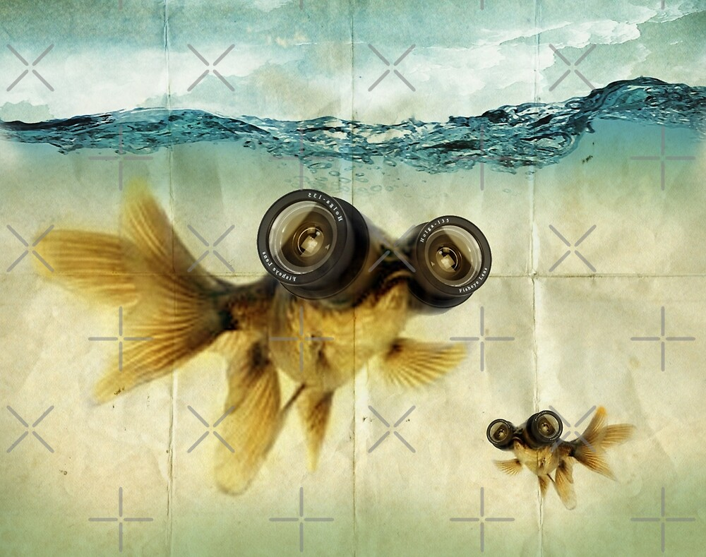 Lens eyed fish by Vin  Zzep