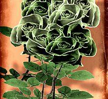 WILD IRISH ROSE - 051 by LBStudios