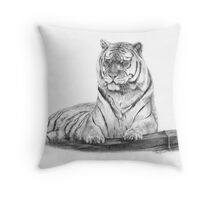 Tiger in Pencil Throw Pillow