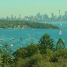 Sydney & the Harbour pano from Watsons Bay by Michael Matthews