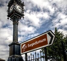 Segedunum Sign Post by Andrew Pounder