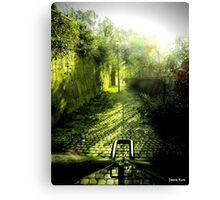 Dingle steps Canvas Print