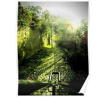 Dingle steps Poster