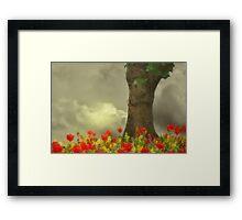 Storm in Summer Framed Print