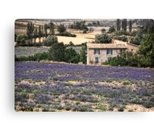 provence agreste Canvas Print