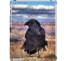 Canyon Raven iPad Case iPad Case/Skin