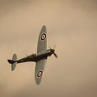 Spitfire by goldeneye2