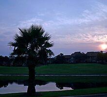 Sunrise in Destin by Cora Wandel