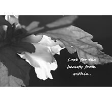 Look for the Beauty in All Things Photographic Print