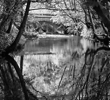 Reflections In Black & White. by Dave Staton