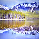 Reflections at Buck Lake by Tara  Turner