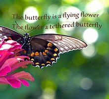 Inspirational Card by Susan S. Kline