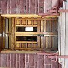 A Door by Liane6161