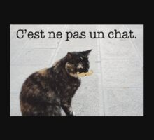 C'est ne pas un chat. by HollieBumble
