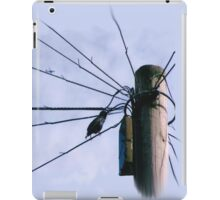 Bankfoot Bird iPad Case/Skin