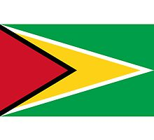 Guyana Flag by cadellin
