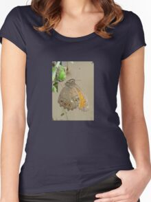 Meadow Brown Butterfly Feeding On Aphids Women's Fitted Scoop T-Shirt
