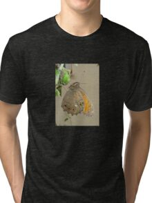 Meadow Brown Butterfly Feeding On Aphids Tri-blend T-Shirt