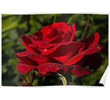 Of Red Roses and Diamonds  Poster