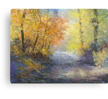 A Tranquil Trail Canvas Print
