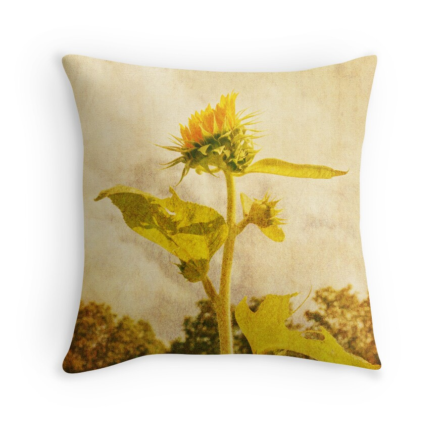 Decorative Pillows With Sunflowers :