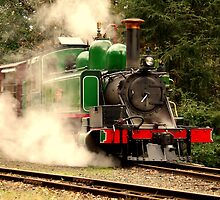 Green Loco by Andrew Turley