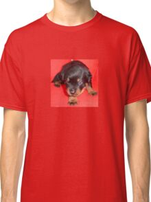 Young Rottweiler Puppy On A Red Background Classic T-Shirt