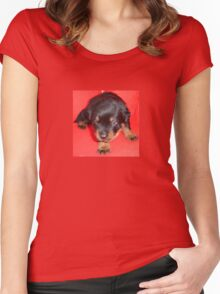 Young Rottweiler Puppy On A Red Background Women's Fitted Scoop T-Shirt
